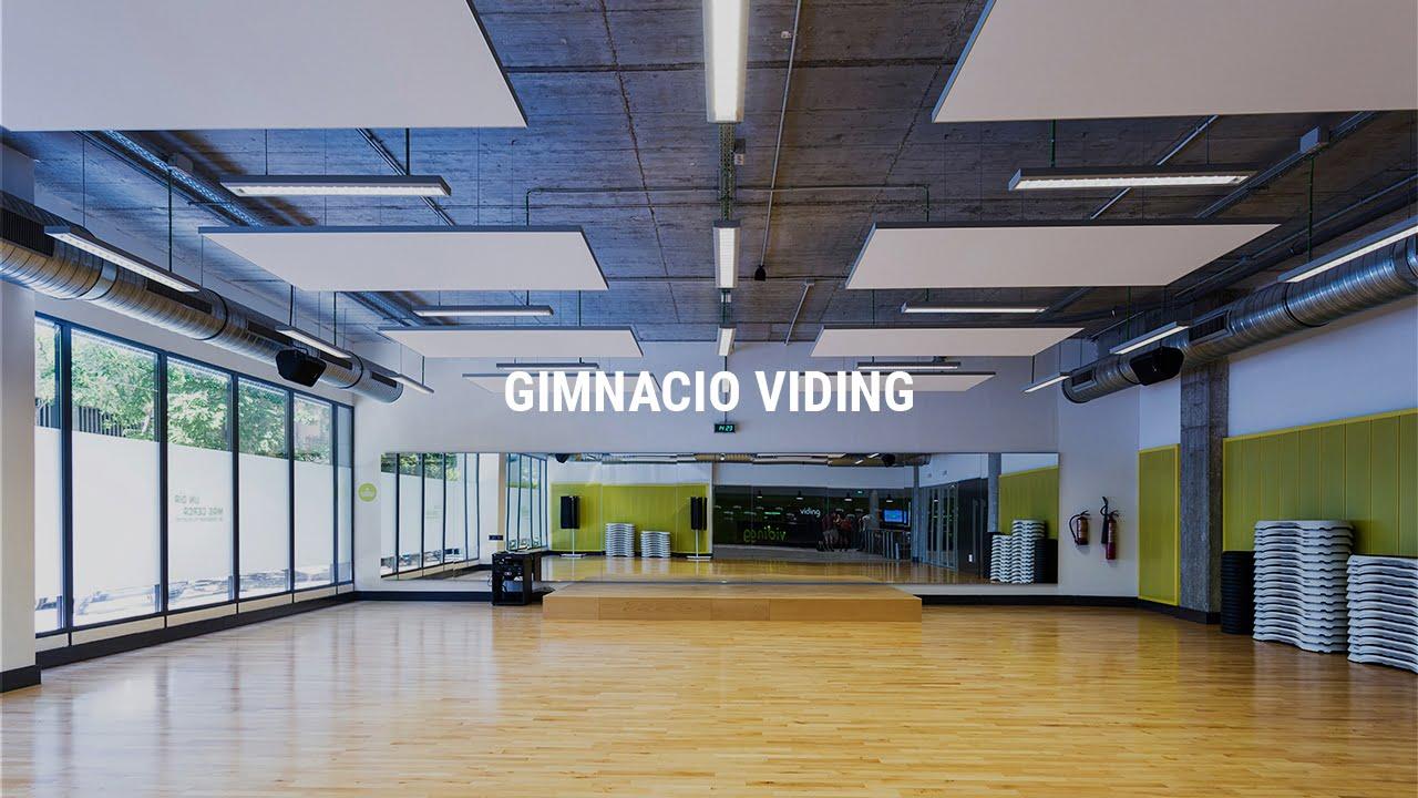 Proyecto Gimnacio Viding Alcántara