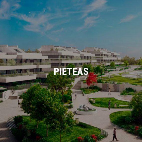 Proyecto Pieteas